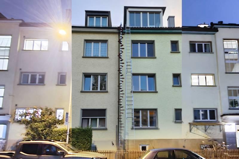 REF 1523: CATWALK Katzentreppe 1040 cm in ZH-Zürich